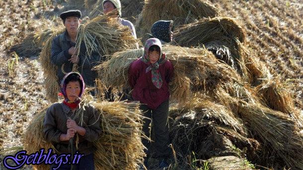 بحران غذایی در کرهشمالی به علت خشکسالی ادامهدار