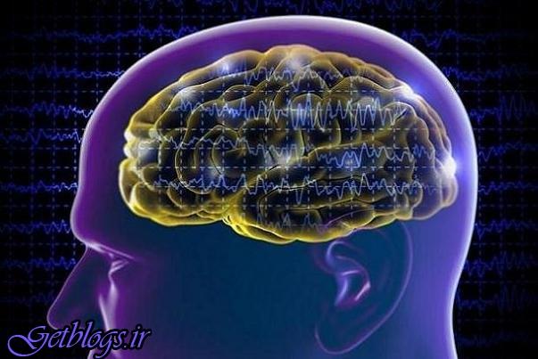 برنامه «آموزش مغز »ریسک زوال عقل را تا ۲۹ درصد کم کردن می دهد