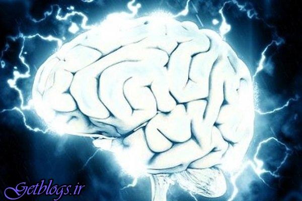 ارتباط آسیب مغزی در مبتلا شدن به آلزایمر