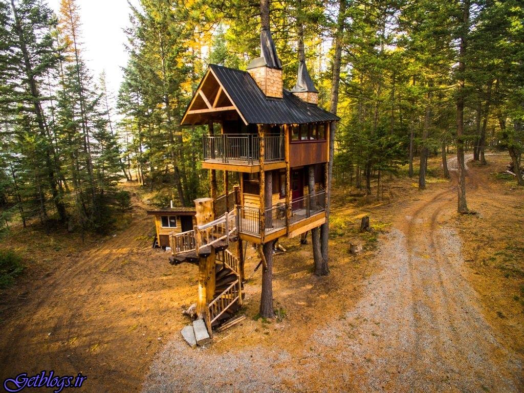 تصویرهای ، هتل درختی با تمام امکانات در دل جنگلهای کانادا
