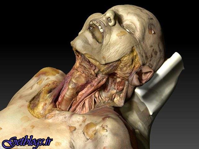 جهت کالبدشکافی تولید شد ، جسد مجازی&quot، &quot
