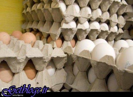 تخممرغ در صدر قیمت کالاهای خوراکی