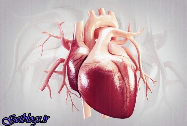 تاثیرات مثبت حمام آب گرم بر سلامت قلب و عروق