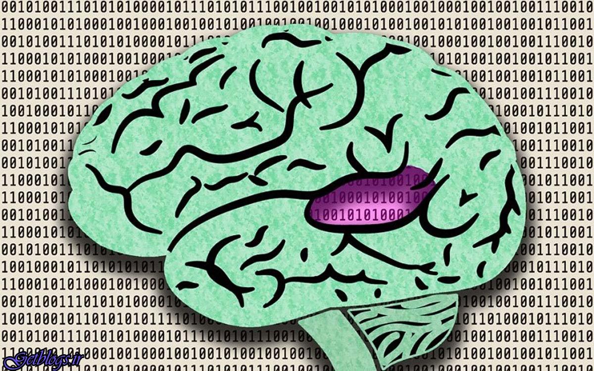 شبکه عصبی تازه صداها را مانند انسان پردازش می کند